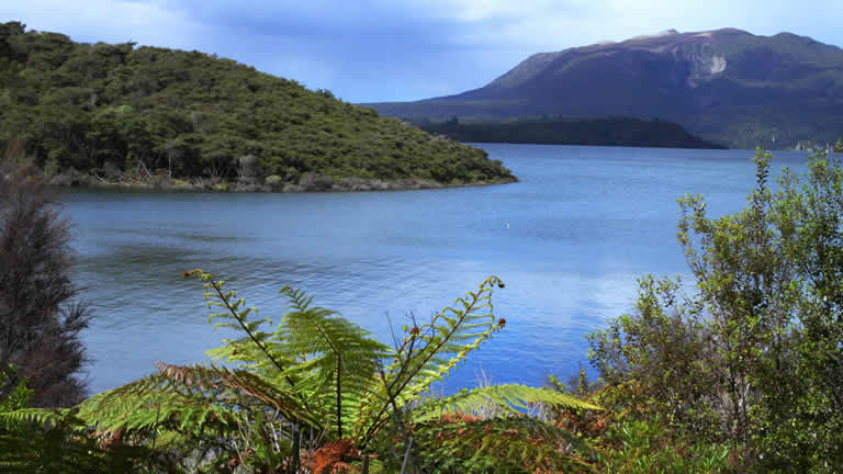 Lake Tarawera stay nearby in Taupo at Riverside apartment