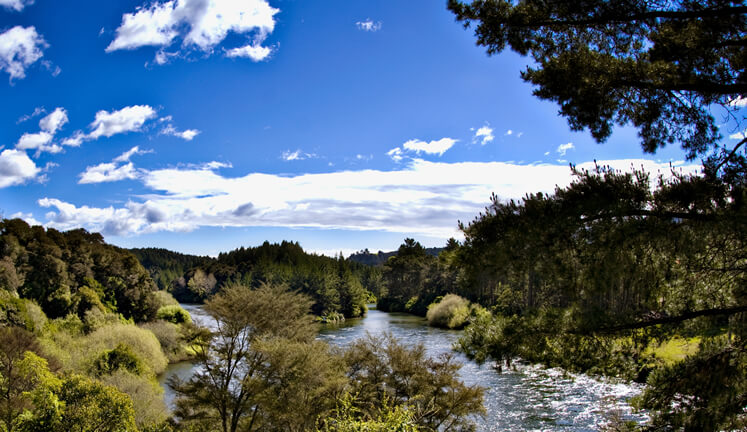 Waikato River Trails accommodation in Taupo NZ